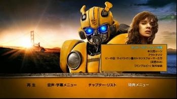Bumblebee_HK-BD_5.jpg